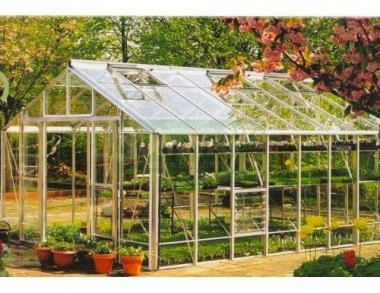 Robinsons Regal Greenhouse - Grey Finish