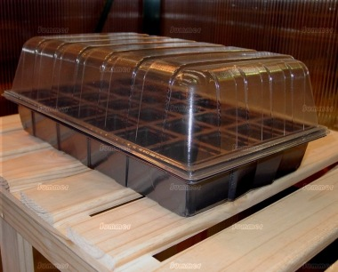 Propagators with Clear Domed Lids and 24 Cells