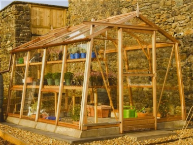 Alton Amateur 8ft Greenhouse - Cedar, Toughened Glass